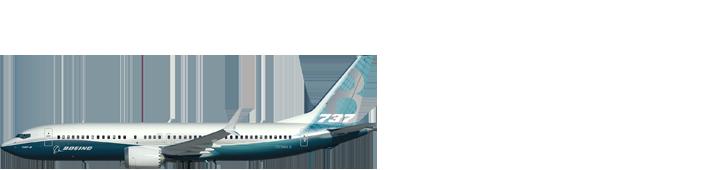 Aircraft 0004 737 8