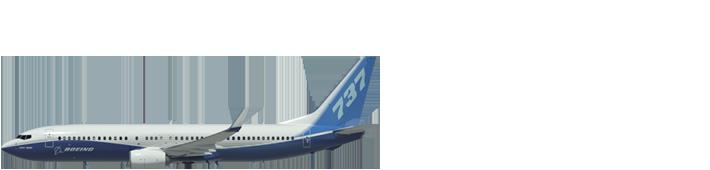 Aircraft 0005 737 800